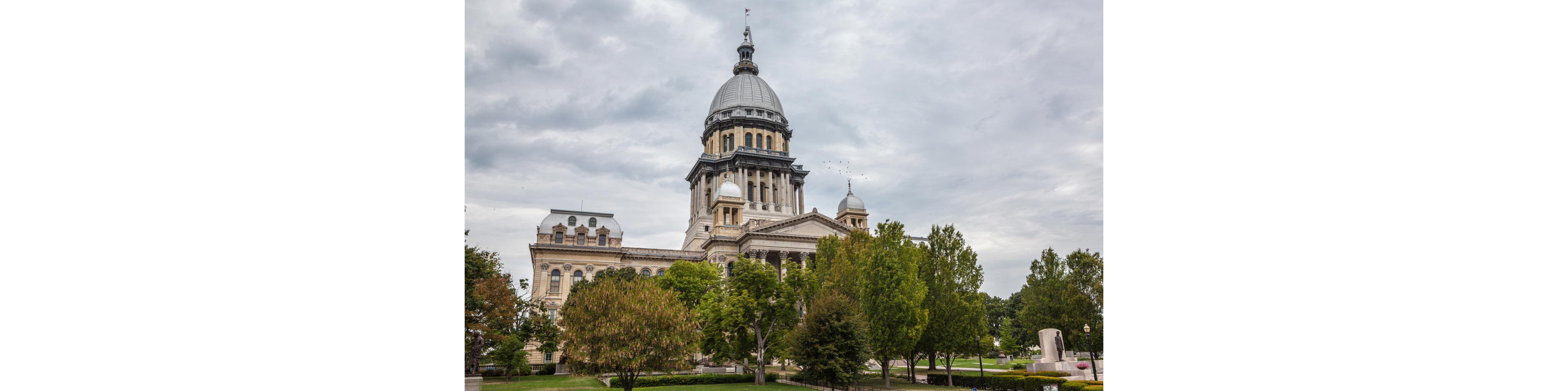 Illinois Authorizes Conversions and Domestications