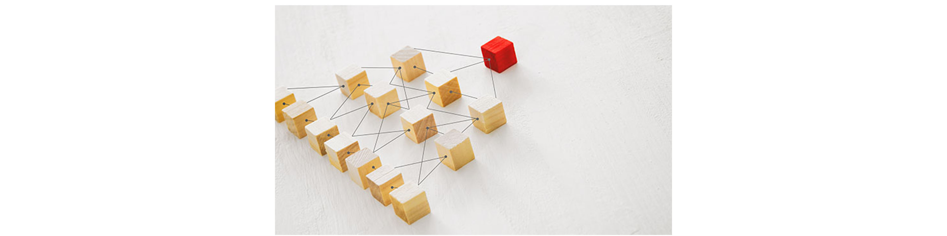 The Series LLC: An Organizational Structure that Can Help Mitigate Risk
