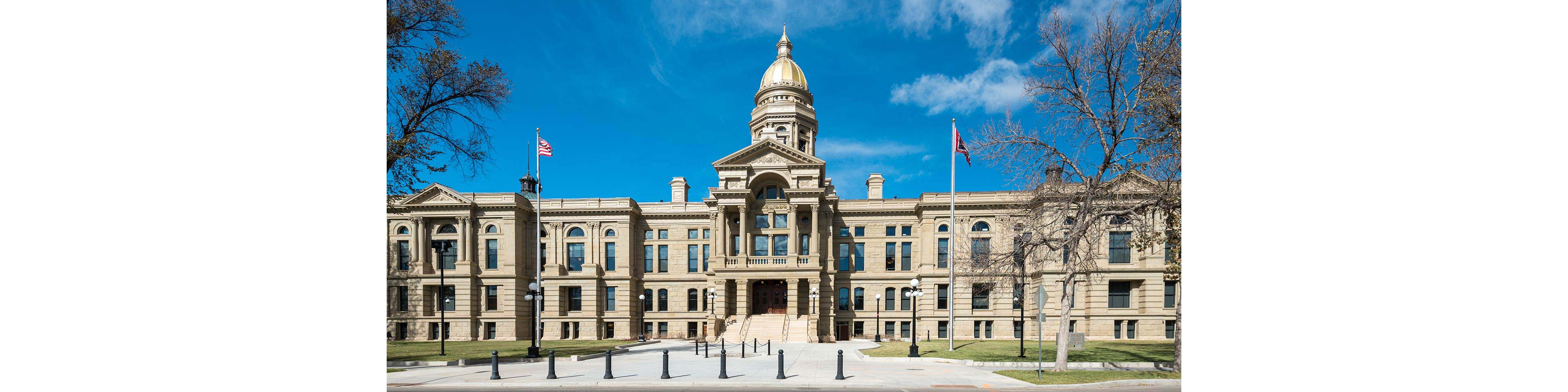 Wyoming Authorizes a New Business Entity – the Statutory Foundation