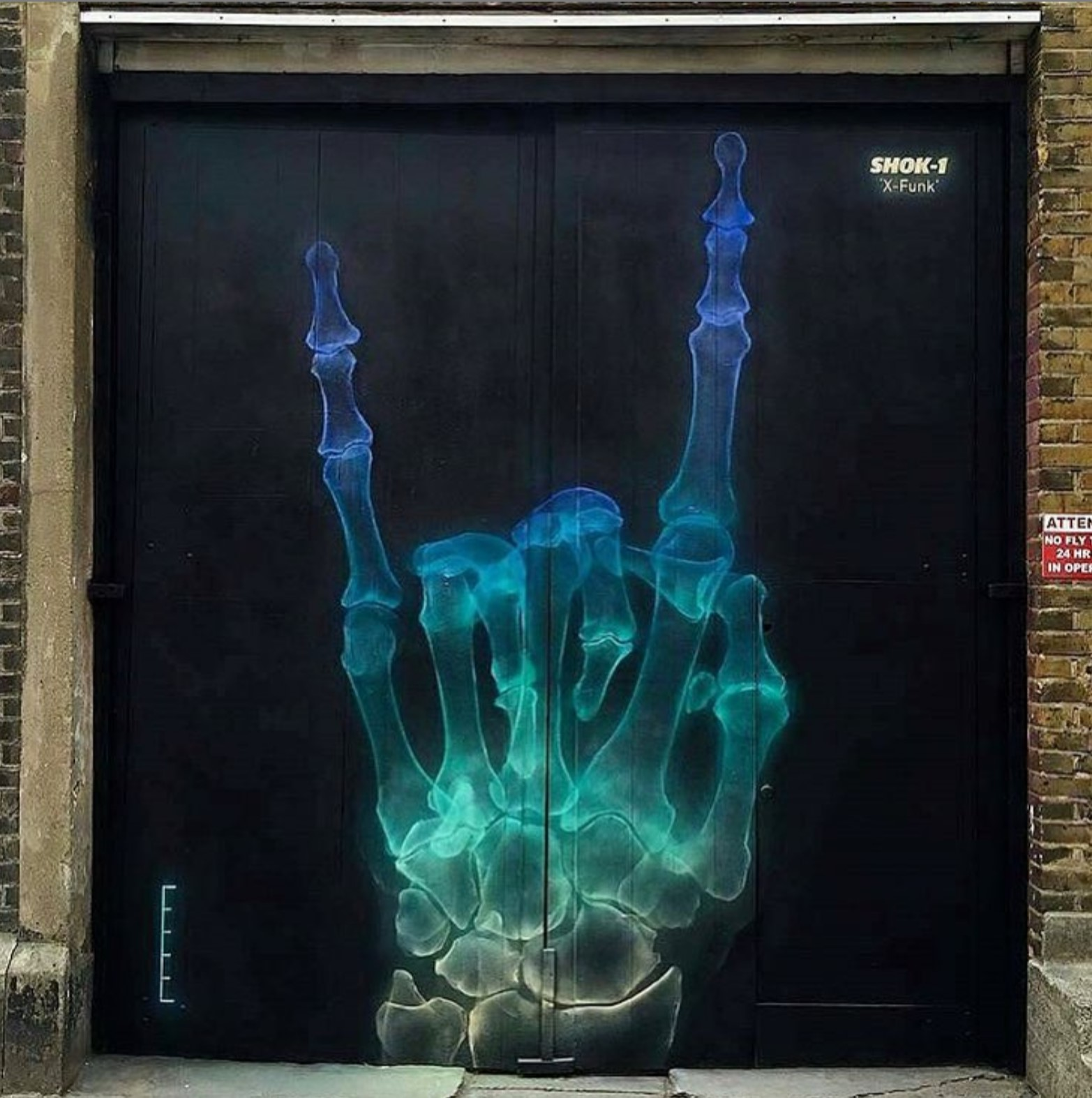 aerosol X-ray art of a hand by SHOK-1