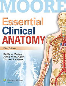Moore Essential Clinical Anatomy book cover