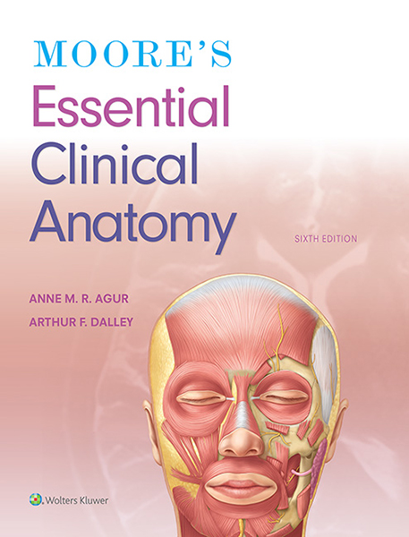 Moore's Essential Clinical Anatomy book cover