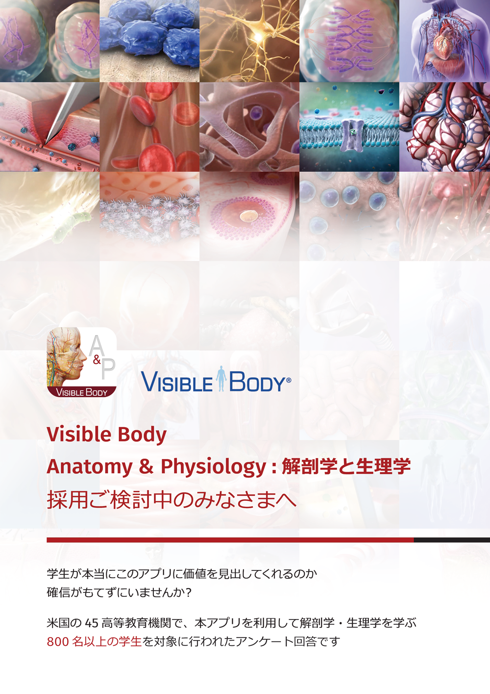Thumbnail of Visible Body Anatomy & Physiology case study